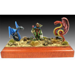 Wizard of Lizard men and companions