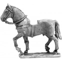 Uncovered War Horse walking 1000 - 1400 (1)